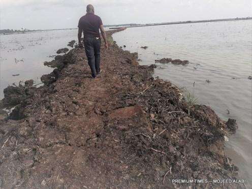 Gabriel Tekuru at the destroyed fish ponds on Bodo-Bonny River