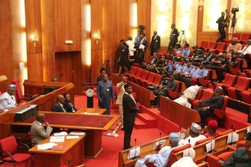 Inspector General of Police, Mohammed Adamu at the Senate