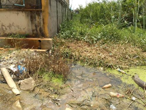 A house bordered by stagnant water