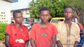The suspected kidnappers arrested by Kano Police command.