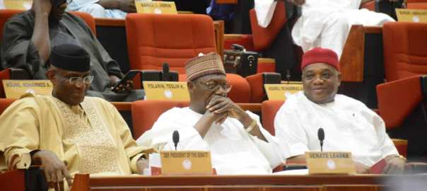 senate plenary