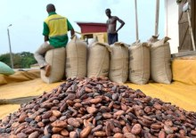 Cocoa beans are pictured next to a warehouse in the village of Atroni, near Sunyani, Ghana, April 11, 2019. REUTERS/Ange Aboa