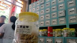 Pangolin scales for sale at a pharmacy in Shantou, Guangdong Province. These scales were kept in an unmarked plastic bag hidden from the counter, sold for 6 renminbi per gram – that's less than $1. The worker told our undercover journalist that pangolin scales are good for reducing swelling and promoting lactation.