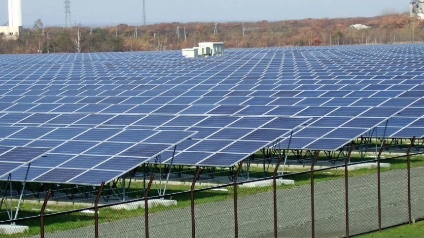 Solar pannels [Photo: Nikkei Asian review]