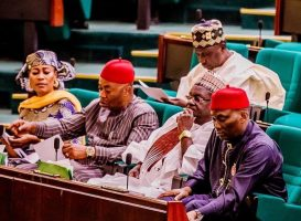 House of Representatives. [PHOTO CREDIT: Official Twitter handle of the house of reps]
