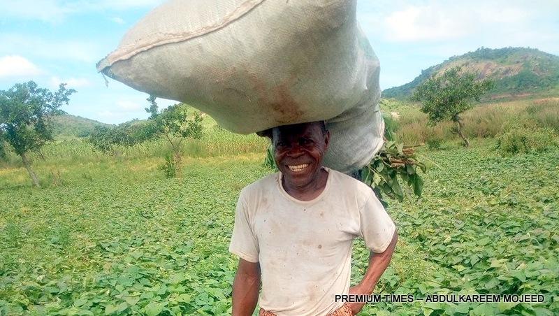 Festus Chukwu, vegetable farmer at Sofo Toge