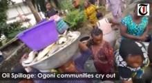Ogoni Oil Spillage