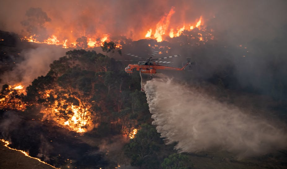 Australian tourism industry seeks urgent help as cost of bushfires grows