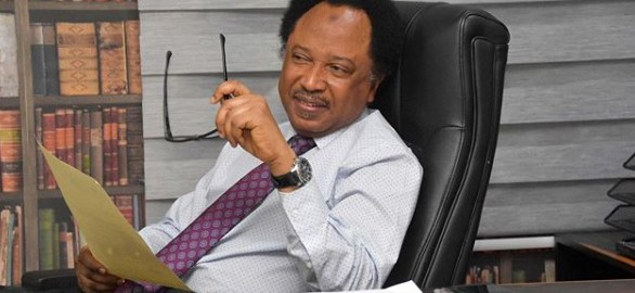 Former Nigerian Senator, Shehu Sani. [PHOTO CREDIT: Official Instagram account of Shehu Sani]