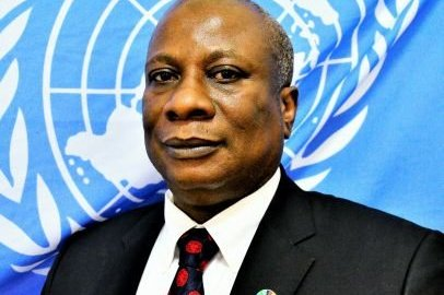 United Nations Humanitarian Coordinator in Nigeria, Edward Kallon