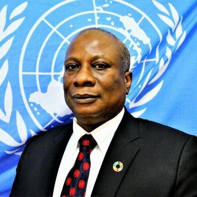 United Nations Humanitarian Coordinator in Nigeria, Edward Kallon