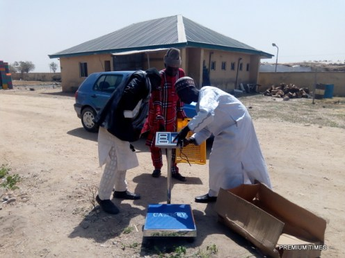 Danladi showing farmers how to use the newly purchased tomatoes measuring scale (Photo Credit: Mary Izuaka)