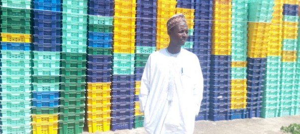 The chairman Tomato Growers Association of Nigeria (TOGAN) Kano State Chapter Mr. Danladi Sani standing infront of the newly purchased tomato crates. (Photo Credit: Mary Izuaka)
