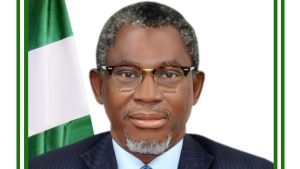 Minister of Mines and Steel Development, Lekan Adegbite. [PHOTO CREDIT: Official web page of Ministry of Mines and Steel Development || www.minesandsteel.gov.ng]