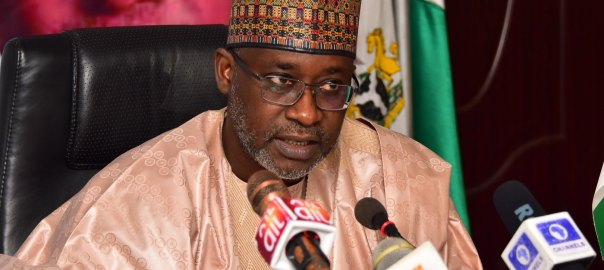 Suleiman Adamu, Minister of Water Resources