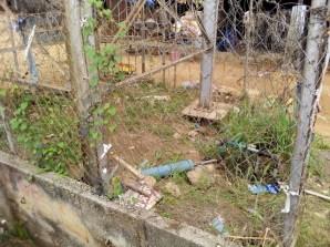 weed gradually takes over apete borehole