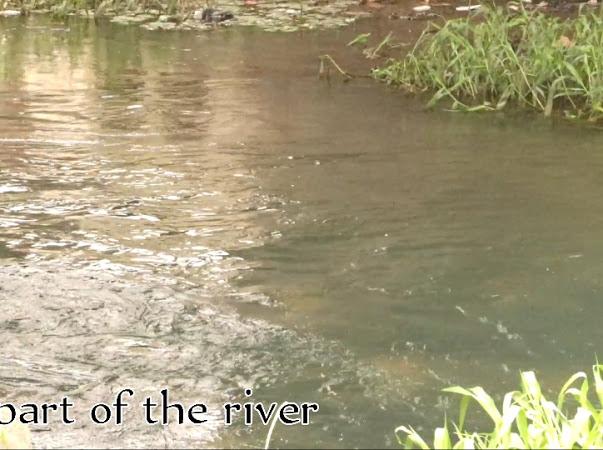 Aba River
