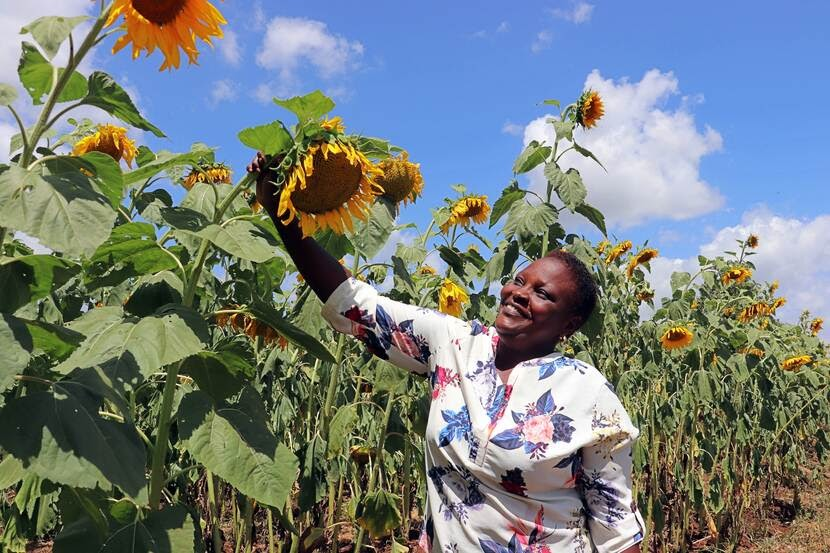Kenya's approach: Solutions come from the people, not from protocols/Photo Credit: Government of the Netherlands
