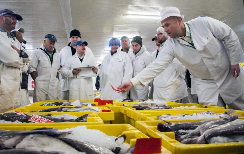 A fish auction underway at the Port of Grimsby.