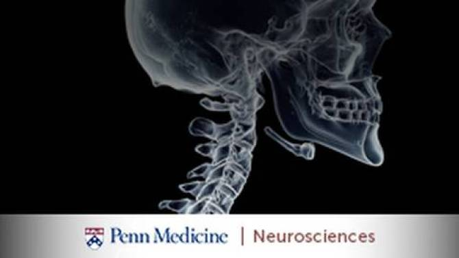 Cranial Base Disorders: Etiologies, Surgical Approaches, and Research Innovations