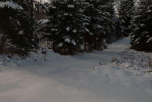 vintergata