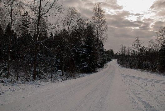 vintervag