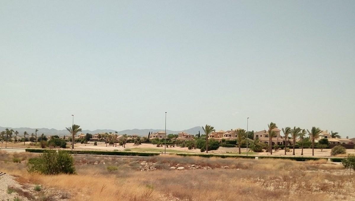 Parcelas Alameda (5)