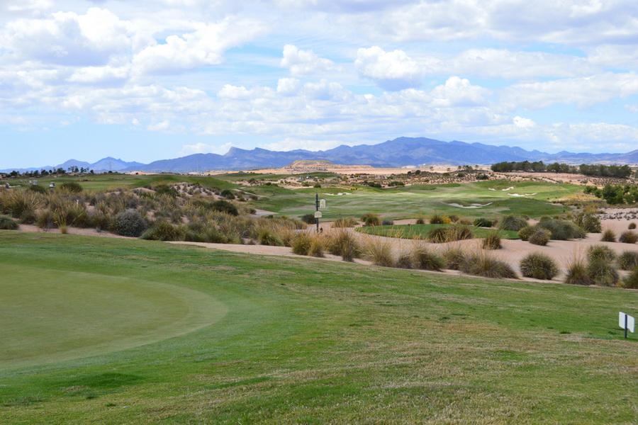 golf1_resize