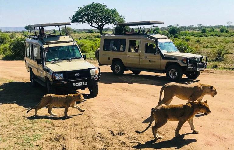 destinatii exotice-Kenya