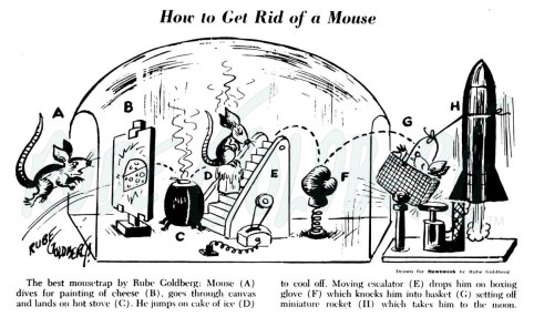 How to Get Rid of a Mouse