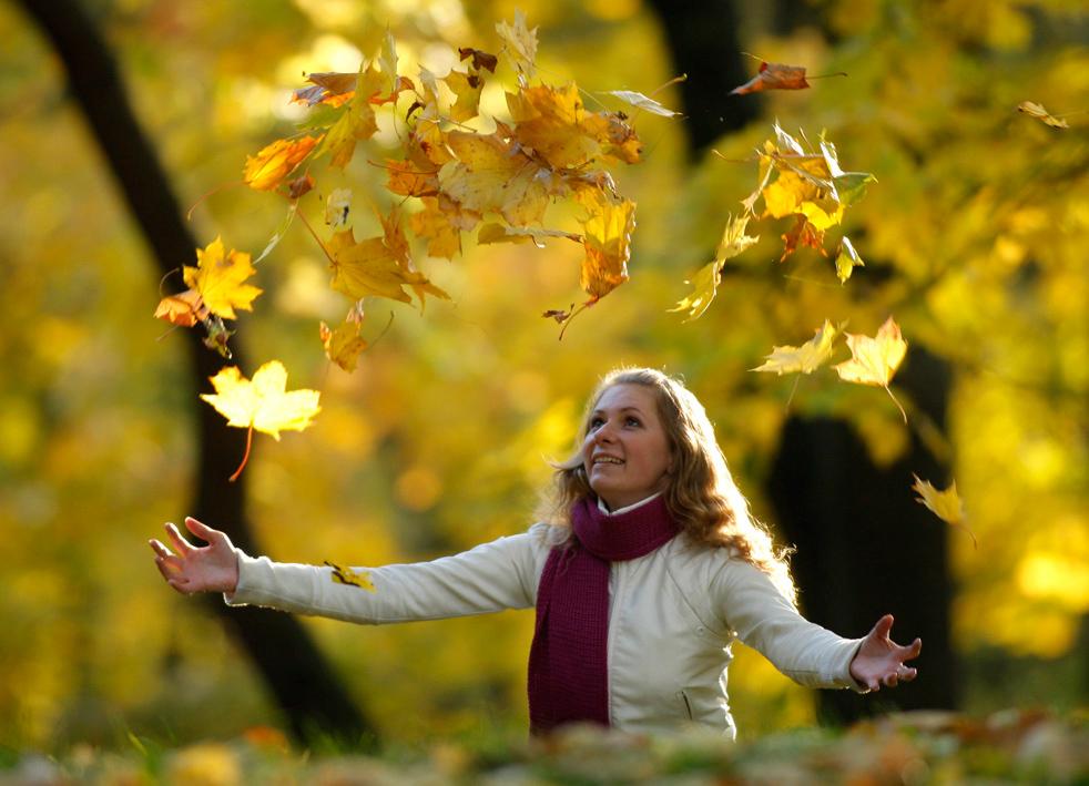 fall_color_11.jpg