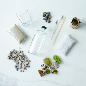 makerskit_diy-apothecary-moss-terrarium_provisions_mark_weinberg_13-08-14_0034_SILO