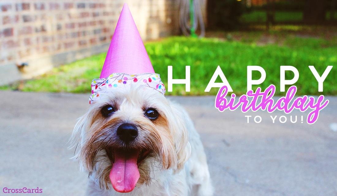 Make Anniversary Card Online Free