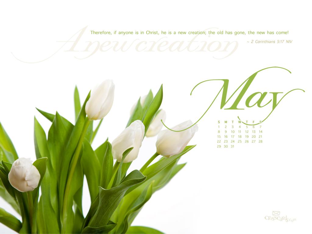 May 2011 - New Creation - 1024 x 768