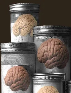 Image result for brain bank
