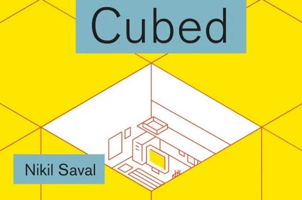 """Cubed"": How the American office worker wound up in a box"