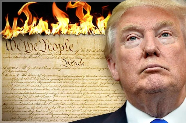 Image result for images of Trump and constitution