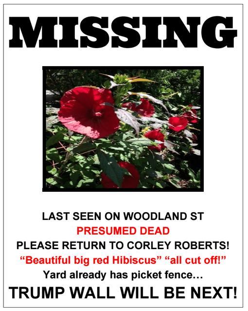 missing flyer png