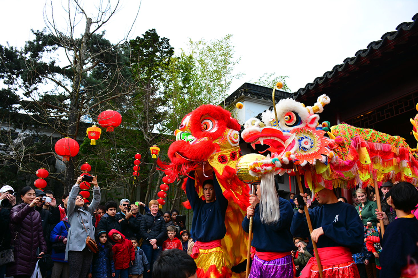 Get Stoked to Celebrate the Year of the Pig in Chinatown on February 10
