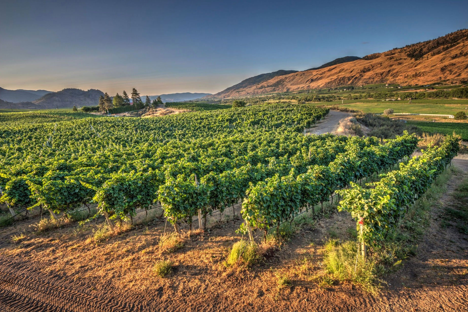 Hawksworth To Launch Summer Winemaker Dinner Series With