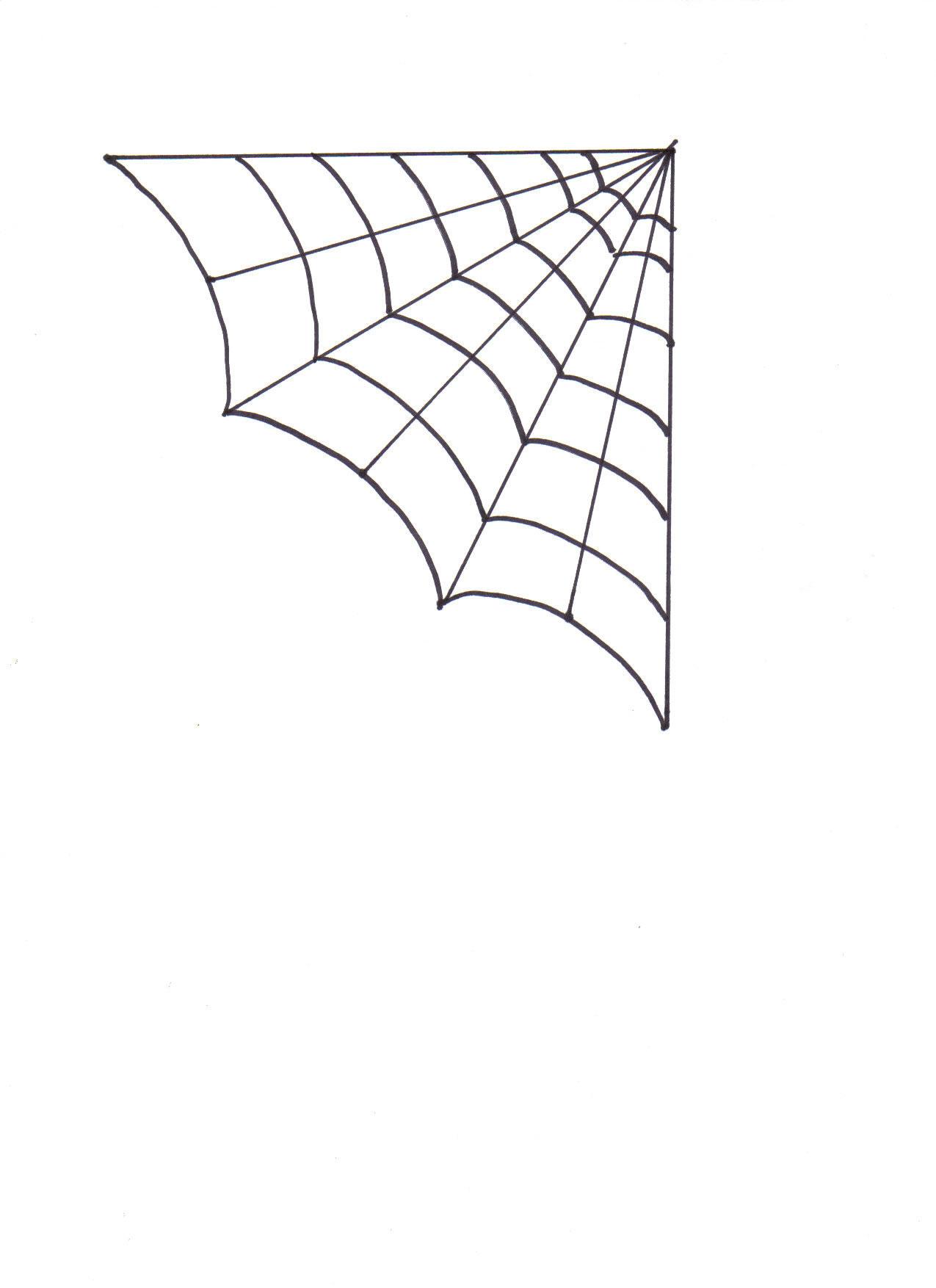Corner Spider Web Images