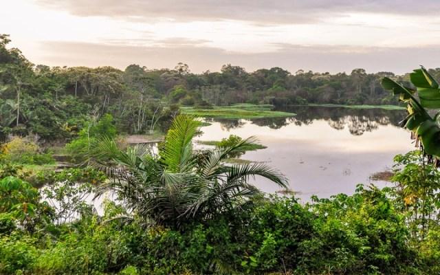 Manaus, Brazil Port Review | ShermansTravel