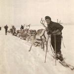 Rajden går, Nils Henrik T, Lars, Eva och Paulina på ackjorna och Britta längst bak med hundvalparna.