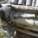 Udtjasamerna har lagt ner stort arbete för att renovera och bevara de fina byggnader som finns i och runt omkring Udtja.