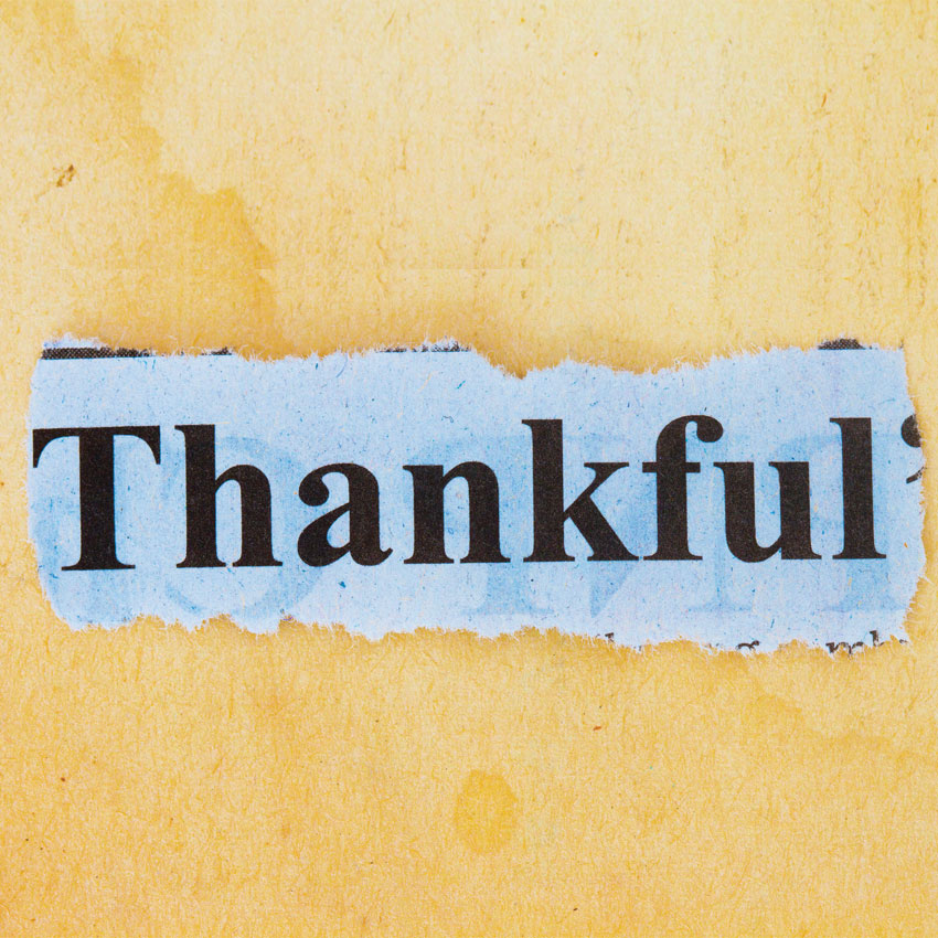 Deedee Crossett gathered together what spa industry leaders have to be thankful for this What are you thankful for?