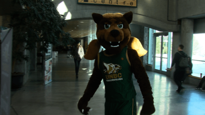 Alpha celebrates first season with Timberwolves | CKPGToday.ca