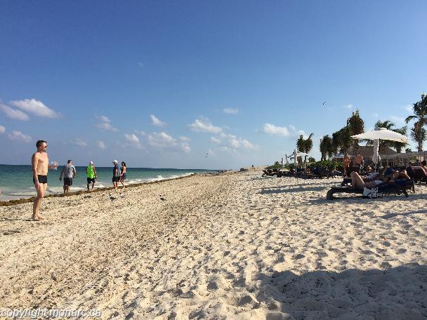 Reviews For Hideaway At Royalton Riviera Cancun Riviera