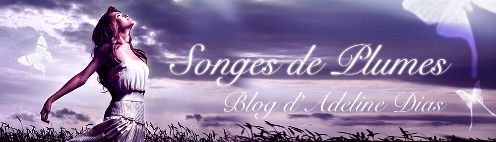 Songes de Plumes