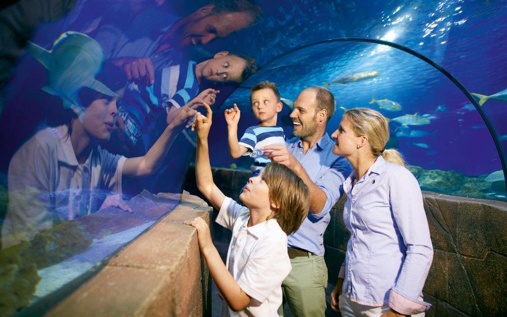 Sea Life Hannover Inkl Hotel Jetzt Gunstig Buchen