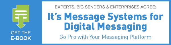 Blog_Post-Ads_Ebook_CustomerSuccess_050614